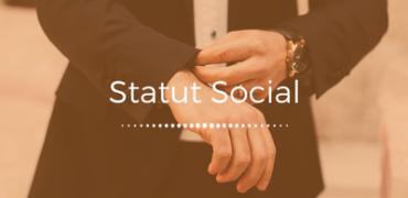 Le Statut Social du Dirigeant d'Entreprise